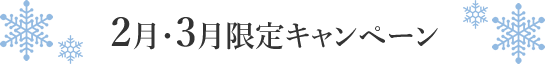 2017年2月~3月限定 メディカルエステキャンペーン